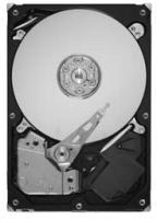 500GB S-ATA2 Fesplatte 3,5 Zoll intern